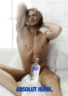 THE ABSOLUT SPIRITS ABSOLUT HUNK